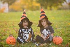 两个孩子,男孩兄弟在有万圣夜服装的公园 免版税图库摄影