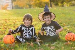 两个孩子,男孩兄弟在有万圣夜服装的公园 图库摄影