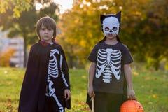 两个孩子,男孩兄弟在有万圣夜服装的公园 库存照片