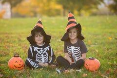 两个孩子,男孩兄弟在有万圣夜服装的公园 库存图片