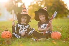 两个孩子,男孩兄弟在有万圣夜服装的公园 免版税库存照片