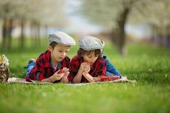 两个孩子,男孩兄弟,读书和吃strawberri 免版税图库摄影