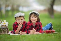 两个孩子,男孩兄弟,读书和吃strawberri 免版税库存图片