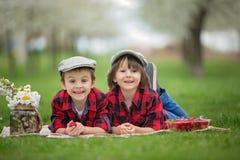 两个孩子,男孩兄弟,读书和吃strawberri 库存照片