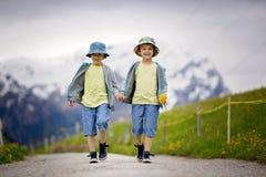 两个孩子,男孩兄弟,走在瑞士人Ap的一条小的道路 库存图片