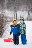 两个孩子,男孩兄弟,滑与在雪的突然移动,冬天 免版税库存图片