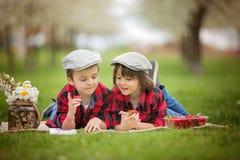 两个孩子,男孩兄弟,读书和吃strawberri 免版税库存照片