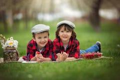 两个孩子,男孩兄弟,读书和吃strawberri 图库摄影