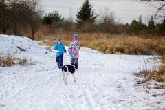 两个孩子,男孩和女孩,冬天步行的与狗 库存照片