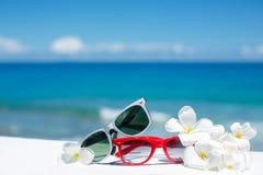 两个对在海洋背景的太阳镜  免版税库存图片