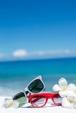 两个对在海洋背景的太阳镜  免版税图库摄影