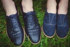 两个对时尚鞋子 库存图片
