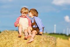 两个小兄弟姐妹男孩和朋友坐干草堆 免版税库存图片