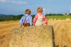 两个小兄弟姐妹男孩和朋友坐干草堆 免版税库存照片