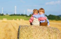两个小兄弟姐妹男孩和朋友坐干草堆 图库摄影