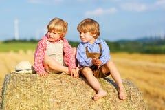 两个小兄弟姐妹男孩和朋友坐干草堆 库存图片