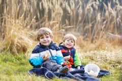 两个小兄弟姐妹男孩有野餐在森林湖,自然附近 免版税库存图片
