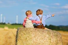 两个小双男孩和朋友坐干草堆 图库摄影