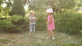 两个小孩充当公园在夏天 股票录像
