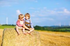两个小孩男孩、孪生和兄弟姐妹坐在干草堆的温暖的夏日 免版税库存照片