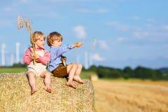 两个小朋友和朋友坐干草堆 免版税图库摄影