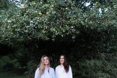 两个少女最好的朋友在绿色树下在夏天公园 免版税库存图片