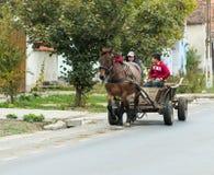 两个年轻人在Sighisoara的郊区乘坐一个用马拉的推车在罗马尼亚 库存照片