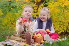 两个愉快的孩子在秋天停放在野餐 库存照片