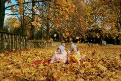 两个愉快的孩子在秋天在公园穿衣 库存照片