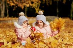 两个愉快的孩子在秋天在公园穿衣 免版税库存照片