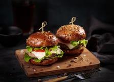 两个新鲜的可口汉堡 图库摄影