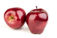 两个新鲜的成熟水多的红色苹果 免版税库存图片