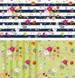 两个无缝的镶边ditsy花卉样式的汇集 设计开花昆虫夏天向量 库存例证