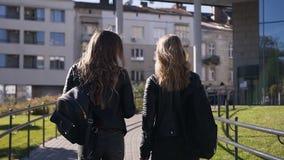 两个时髦的年轻女朋友后方的画象有长发的走城市和快乐地聊天在温暖的  股票视频
