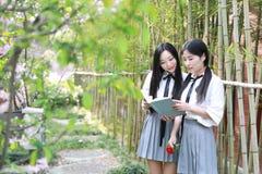 两个最好的朋友bestie亚洲中国愉快的年轻逗人喜爱的可爱的可爱的学生青年时期在公园庭院学校夏天读了书 免版税库存照片