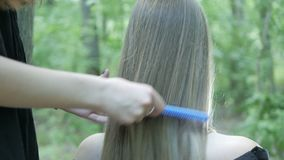 两个朋友梳他们的头发 股票录像
