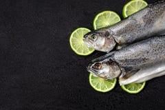 两个未加工的河鳟鱼、石灰切片、香料和草本在黑石背景 免版税库存照片