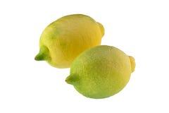 两个未成熟的柠檬 库存图片