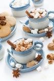 两个杯子可可粉用蛋白软糖和桂香,垂直 免版税库存照片