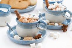 两个杯子可可粉用蛋白软糖和桂香 免版税库存图片