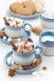 两个杯子可可粉用蛋白软糖和桂香 免版税库存照片