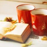 两个杯子和一条毯子反对窗口与/温暖大气的雨下落和叶子在多雨时间 免版税库存图片