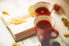 两个杯子和一条毯子反对窗口与/温暖大气的雨下落和叶子在多雨时间 库存照片