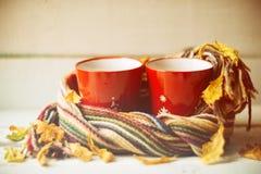 两个杯子和一条毯子反对窗口与/温暖大气的雨下落和叶子在多雨时间 免版税库存照片