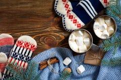 两个杯子热的可可粉或巧克力用蛋白软糖、手套、圣诞节装饰和杉树在木土气背景 免版税库存图片
