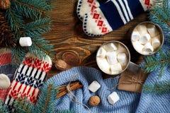 两个杯子热的可可粉或巧克力用蛋白软糖、手套、圣诞节装饰和杉树在木土气背景 库存图片