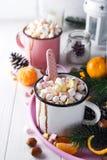 两个杯子用热巧克力或可可粉用熔化蛋白软糖 免版税库存图片