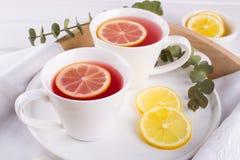 两个杯子红色果子和清凉茶与柠檬切片 免版税库存照片