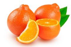 两个桔子蜜桔或Mineola与叶子在白色背景 免版税库存照片