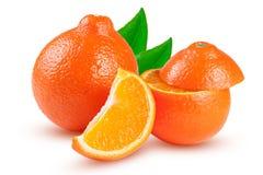 两个桔子蜜桔或Mineola与在白色背景和叶子隔绝的切片 库存图片